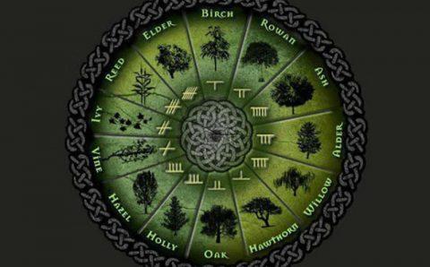 Хороскопът на келтите